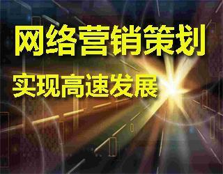 网络推广策划,实现高速发展